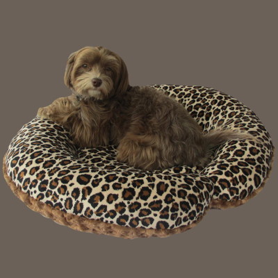This c-shape dog bed was donated to the North Shore Animal League